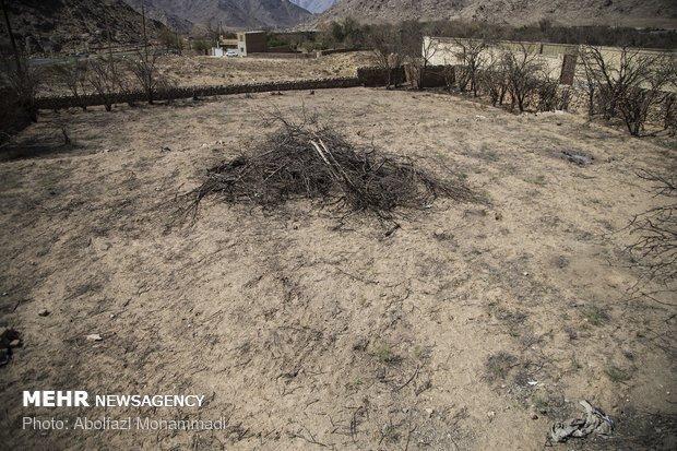 اختصاص 850 میلیارد ریال برای مقابله با آثار خشکسالی