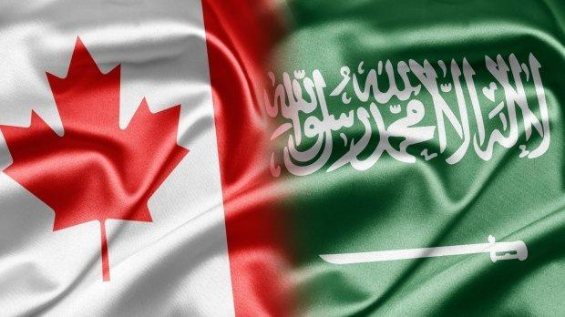 کاریکاتور، عربستان و کانادا