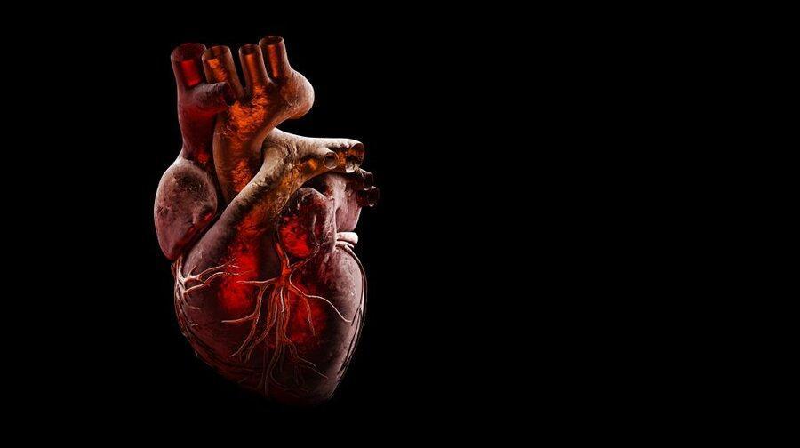 رابطه اسرارآمیز میان ویروس کرونا و قلب، کرونا ممکن است به قلب آسیب بزند