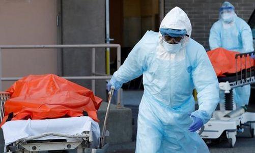 تلفات کرونا در آمریکا به 215 هزار تن رسید