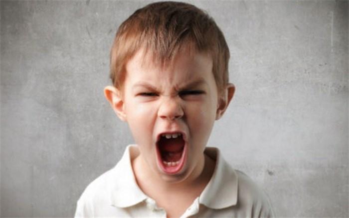 چه عواملی باعث پرخاشگری بچه ها می شود